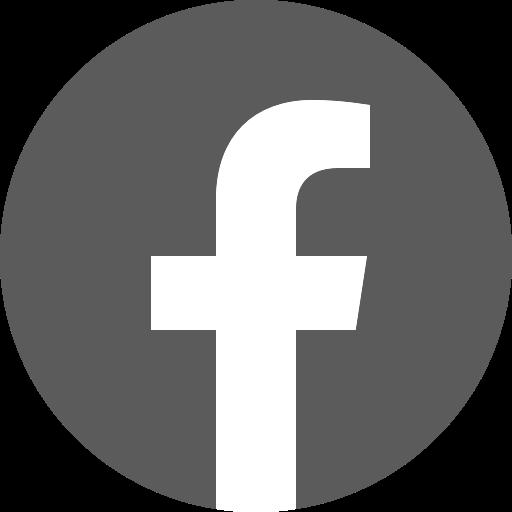 Icône Facebook gris