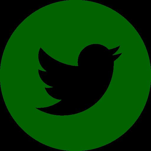 Icône Twitter ronde verte