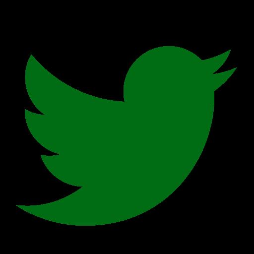 Icône Twitter verte