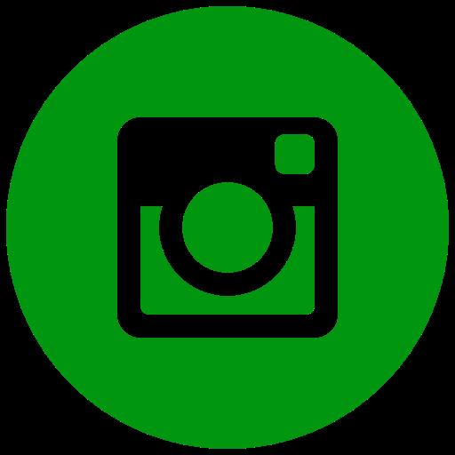 Icône Instagram vert