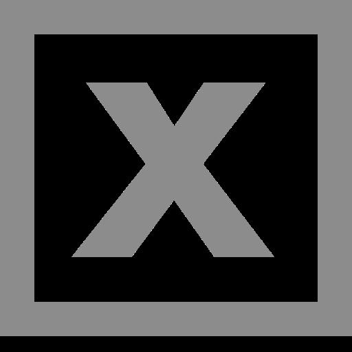 Logo Excel (icône png) gris